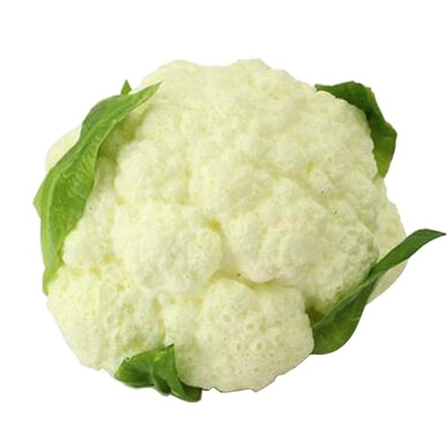 [C] Artificial Vegetable Lifelike Vegetable Faux Vegetable Home Decor