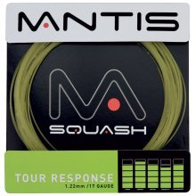10m 17lg Natural Mantis Tour Response Squash String Set - Badminton Racket - Mantis Natural Tour Response 17lg String Set Squash Badminton Racket