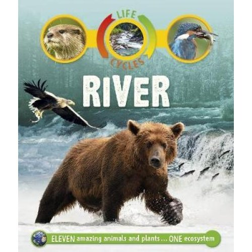 Life Cycles: River