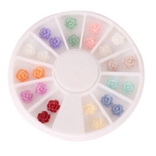 2 Packs Beautiful Nail Art DIY Decoration Random Color,Style 8