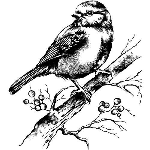 """Crafty Individuals Unmounted Rubber Stamp 3.14""""X3.85""""-Bluebird With Branch & Berries"""