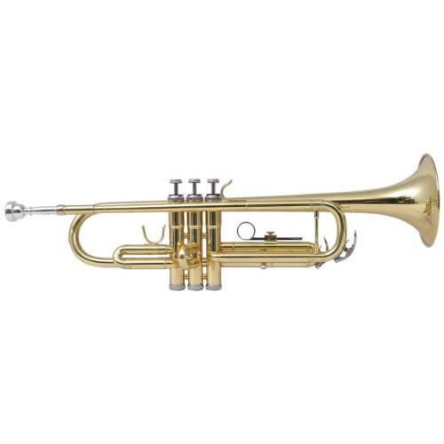 vidaXL Trumpet Yellow Brass with Gold Lacquer Bb