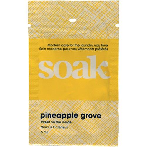 Soak Wash Single Use Sample Size 48/Pkg-Pineapple
