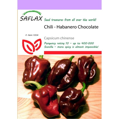 Saflax  - Chili - Habanero Chocolate - Capsicum Chinense - 10 Seeds