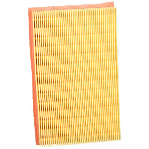 Mann Filter C 2448 Hummel  Air Filter