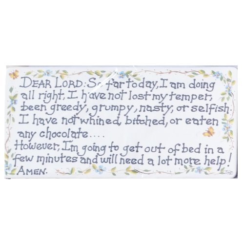 Dear Lord So Far Today I Am Doing Alright Fridge Magnet Fun Funny Novelty Gift Humour Humourous Quotes Joke Kitchen Gift