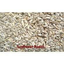 SUNFLOWER HEARTS / KERNELS FOR WILD BIRDS 20kg