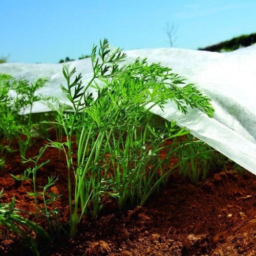 Nonwoven Crop & Plant Cover - Frost Protection - Insect Netting - 1.6m X 10m