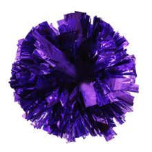 Team Sports Cheerleading Poms Match Pom Plastic Ring Purple 2 PCS